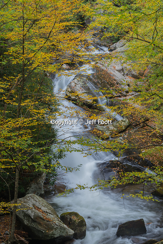 Middle Prong of Little River, Great Smoky Mountains National Park, fall.