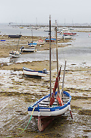 France, Bretagne, (29), Finistère,   Penmarch, Kérity: le port de pêche