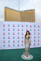 LAS VEGAS, NV - NOVEMBER 15 :  Ana Patricia Gonzalez pictured at 2012 Latin Grammys at Mandalay Bay Resort on November 15, 2012 in Las Vegas, Nevada.  Credit: Kabik/Starlitepics/MediaPunch Inc. /NortePhoto /NortePhoto