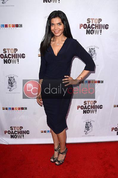 Sheila Shah<br /> at the Stop Poaching Now 2016 Gala, Ago Restaurant, West Hollywood, CA 05-25-16<br /> David Edwards/Dailyceleb.com 818-249-4998