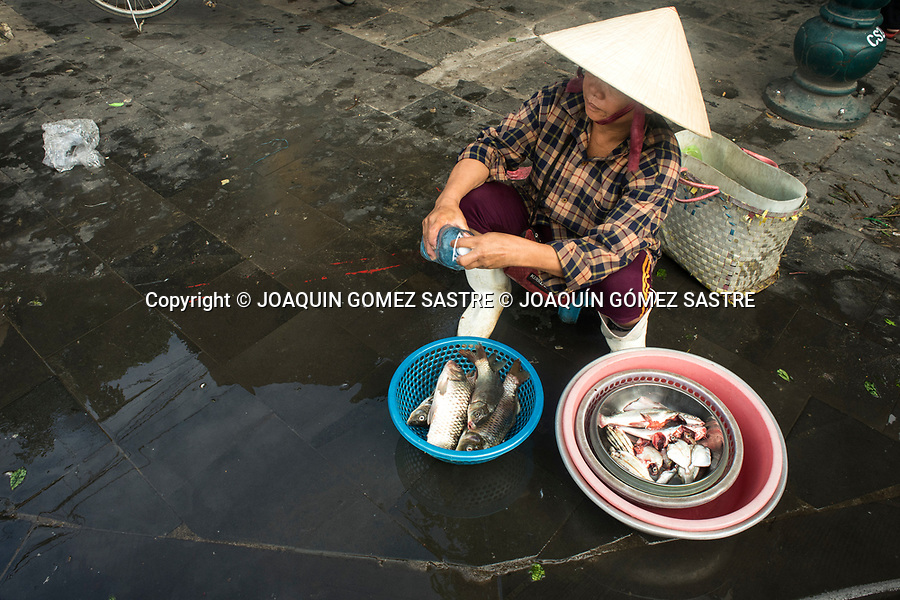 A woman sells fish on a street in Hoian (VIETNAM) people make most of their life on the street.<br /> HOIAN-VIETNAM