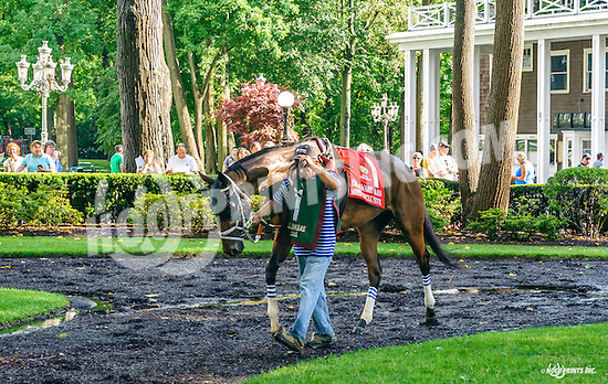 Miss Inclusive before The Delaware Oaks (gr 3) at Delaware Park on 7/9/16