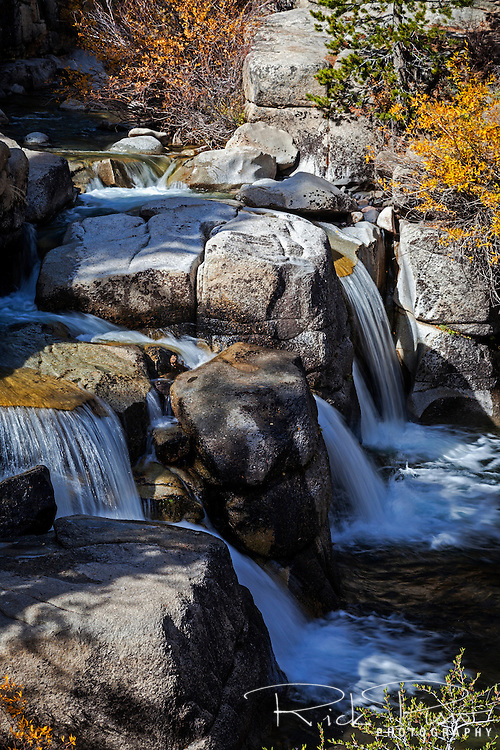 Water flows over a trio of cascades on Leavitt Creek in Mono County, California.