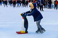 NOVA YORK, USA, 11.01.2019 - CLIMA-EUA - Publico é visto patinando no ice rink Bryant Park na ilha de Manhattan em Nova York onde a temperatura teve maxima de -1 e minina de -6 nesta sexta-feira, 11. (Foto: Vanessa Carvalho/Brazil Photo Press)