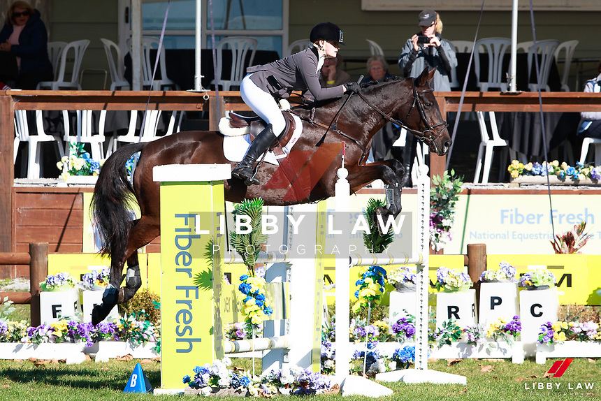 Greer Caddigan rides Gymnastik Showdown during the Fiber Fresh CCI1* Championsip Showjumping at the 2017 NZL-NRM National Three Day Event Championships. National Equestrian Center, Taupo. Sunday 14 May. Copyright Photo: Libby Law Photography
