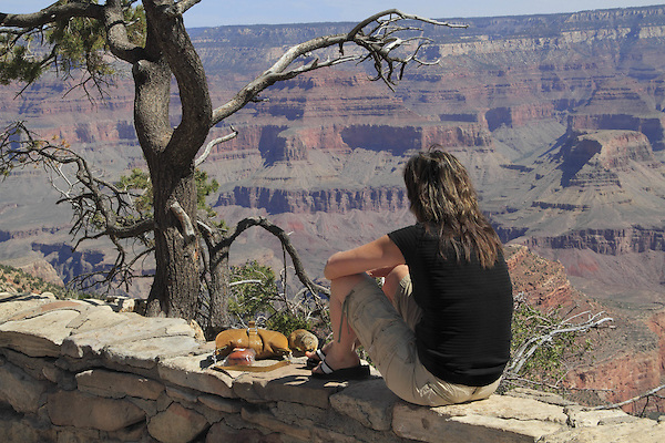 Squirrel sniffing and Caucasian woman sitting on the South Rim in Canyon Village looking towards the Tonto Plateau and the North Rim, Grand Canyon National Park, northern Arizona, USA . John offers private photo tours in Grand Canyon National Park and throughout Arizona, Utah and Colorado. Year-round.