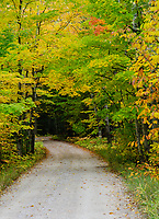 An autumn colored road exits the forest, Door County, Wisconsin