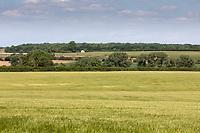 27.5.2020 Farm landscape<br /> ©Tim Scrivener Photographer 07850 303986<br />      ....Covering Agriculture In The UK....