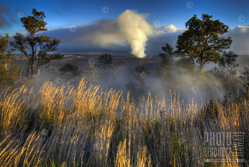 An ash cloud rises from Halema'uma'u crater of Kilauea Volcano in the distance at Hawai'i Volcanoes National Park, Big Island of Hawai'i.