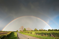 Rainbow over a country road, Wetheral, Cumbria.....Copyright..John Eveson,.Dinkling Green Farm,.Whitewell,.Clitheroe,.Lancashire..BB7 3BN.Tel. 01995 61280.Mobile 07973 482705.j.r.eveson@btinternet.com.www.johneveson.com