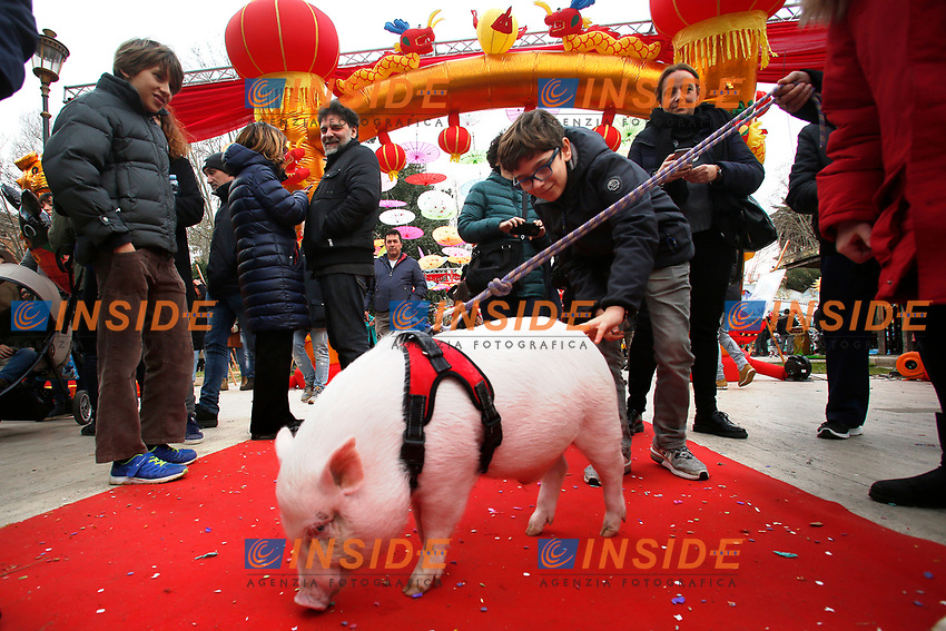 A Roma leading a pig, the symbol of this Chinese year<br /> Rome February 10th 2019. Celebrations for Chinese New Year 2019 in Rome. This year begins the year of the pig.<br /> Foto Samantha Zucchi Insidefoto