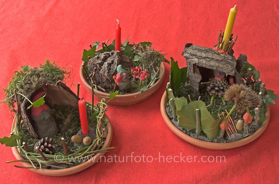 zwergengaertchen | naturfoto frank hecker, Garten und erstellen