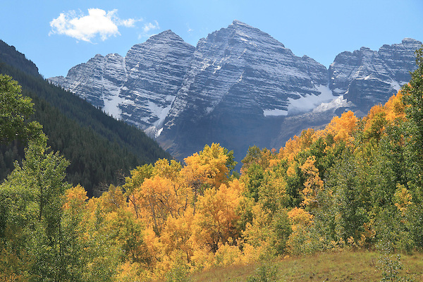 Autumn aspen trees and the Maroon Bells Peaks, near Aspen, Colorado, USA John offers autumn photo tours throughout Colorado. John offers fall foliage photo tours throughout Colorado.