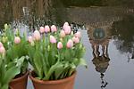Filoli Garden in the spring