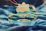 conceptual photograph of a paper cloud and boat inside a fish tank