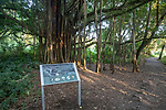 Kipahulu National Park