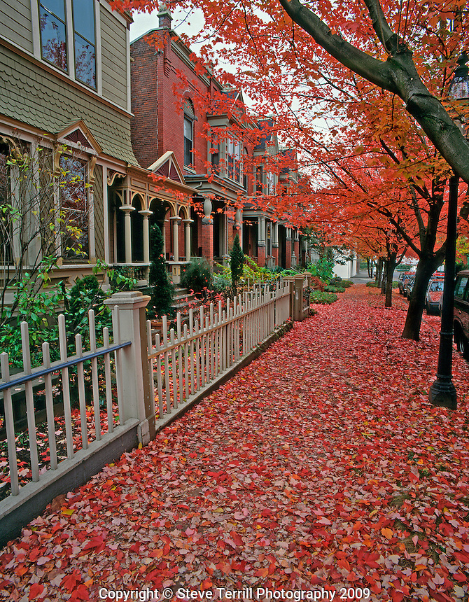 USA, Oregon, Autumn leaves litter sidewalk along row houses in NW Portland