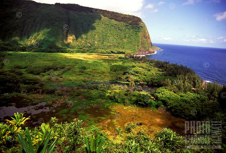 Panoramic view of lush, pristine Waipio Valley and the Hamakua coastline on the Big Island of Hawaii.