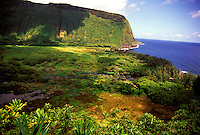 Panoramic view of lush, pristine Waipio Valley and the Hamakua coastline on the Big Island of Hawaii.