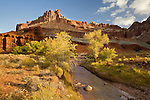 The Castle and Sulphur Creek in autumn at Capital Reef National Park, UT