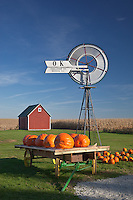 Bureau County, IL<br /> Fall scene of pumpkins, windmill and distant red barn under a blue sky, Miller's produce stand