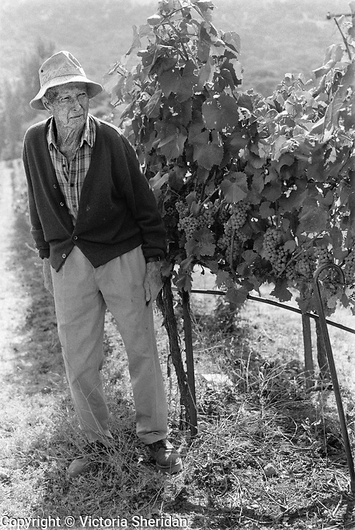 84 year old Vineyard Grower Jim Birkmyer. Part of the Face of Labor portrait series. 1999 (Photo/Victoria Sheridan)