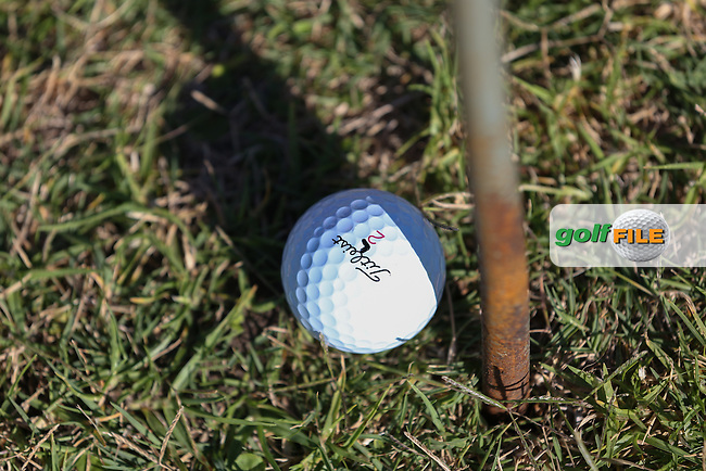 The ball of Eduardo De La Riva (ESP) within an inch of the rope barrier pole on the last hole during Round Three of the Africa Open 2015 at the East London Golf Club, East London, Eastern Cape, South Africa. Picture:  David Lloyd / www.golffile.ie. 07/03/2015