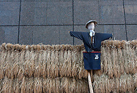 A scarecrow and rice bushells against the sides of a skyscraper in Yurakucho, Tokyo, Japan. Thursday September 15th 2011