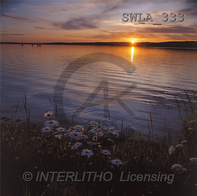 Carl, LANDSCAPES, photos(SWLA333,#L#)