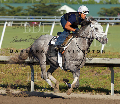 Palm Meadows Training Center 1-2-12