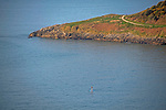 Swansea, UK, 24th April 2020.<br />A lone paddleboarder makes the most of the stunning weather at Langland Bay near Swansea this morning as government warnings continue to ask people to stay at home due to the Coronavirus outbreak that is spreading across the UK and the world.
