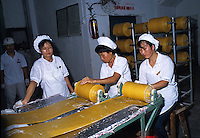 Rolling ribbons of potato stripes for chips production