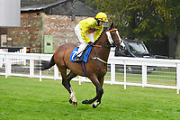 Kinglami ridden by Kate Leahy goes down to the start of The Shadwell Racing Excellence Apprentice Handicap Div 1 during Horse Racing at Salisbury Racecourse on 14th August 2019