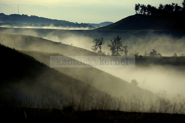 Fog surrounds a patch of forest on top on a reclaimed strip mine in Knott County Thursday morning. .