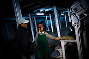 Factory supervisor, Niru Century (left) keeps a keen eye on his factory worker, Indrey Sarki during the process of tea drying at Makaibari Tea Estate factory, Kurseong in Darjeeling, India.