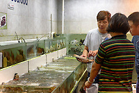 Fischhändler in Kowloon, Hongkong, China<br /> Fish dealer in Kowloon, Hongkong, China