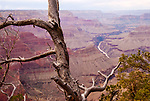 Colorado River, Grand Canyon, Arizona's Wonder of the World, USA.