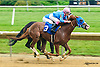 Proud Patriot winning at Delaware Park on 6/20/15