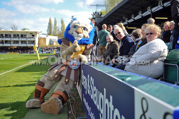 Bath Rugby mascot Maximus at half-time. Aviva Premiership match, between Bath Rugby and Worcester Warriors on April 19, 2014 at the Recreation Ground in Bath, England. Photo by: Patrick Khachfe / Onside Images