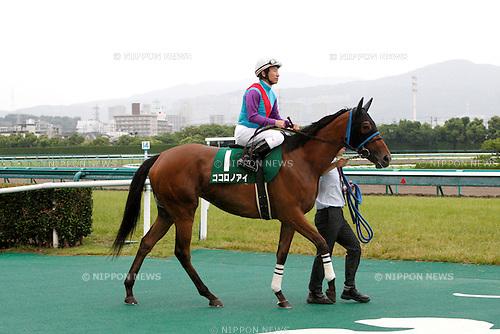 Kokorono Ai (Norihiro Yokoyama),<br /> JUNE 12, 2016 - Horse Racing :<br /> Kokorono Ai ridden by Norihiro Yokoyama before the Mermaid Stakes at Hanshin Racecourse in Hyogo, Japan. (Photo by Eiichi Yamane/AFLO)