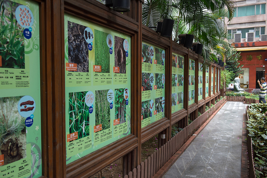 HONG KONG SAR: CHINA - March 07 ,2018: Queen Street Rest Garden Bonham Street Sheung Wan.The garden has over 100 plants used in Chinese medicine on display with explanation of their uses.