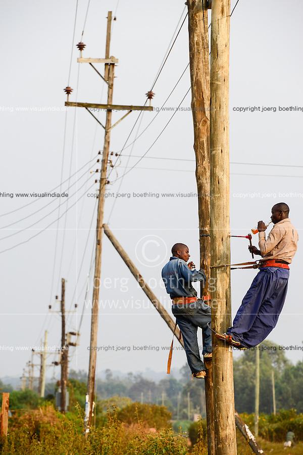 KENYA, County Kakamega, rural electrification, grid construction in village / KENIA, County Kakamega, laendliche Elektrifizierung, Leitungsausbau durch KenGen in einem Dorf