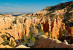 Fairyland Canyon at Sunset, Bryce Canyon National Park, Utah