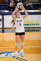 20 November 2008:  FIU setter Natalia Valentin (9) sets up a kill shot in the FIU 3-1 victory over South Alabama in the first round of the Sun Belt Conference Championship tournament at FIU Stadium in Miami, Florida.