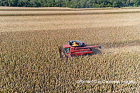 63801-12306 Harvesting corn in fall-aerial  Marion Co. IL