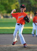 Pleasanton National Little League AAA Giants action 2015. (Photo by AGP Photography)