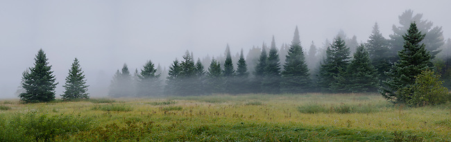 Mist layers over a grassland on Madeline Island in the Apostle Islands, Ashland County, Wisconsin