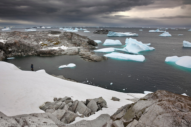 Photography hikes along the shores of Peterman Island, western Antarctic Peninsula.