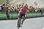 Rigoberto Uran (COL) EF Education First climbs to the finish line in 7th place atop the Col du Tourmalet near the end of Stage 14 of the 2019 Tour de France running 117.5km from Tarbes to Tourmalet Bareges, France. 20th July 2019.<br /> Picture: Colin Flockton | Cyclefile<br /> All photos usage must carry mandatory copyright credit (© Cyclefile | Colin Flockton)