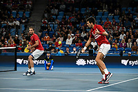 12th January 2020; Sydney Olympic Park Tennis Centre, Sydney, New South Wales, Australia; ATP Cup Australia, Sydney, Day 10; Serbia versus Spain; Viktor Troicki and Novak Djokovic of Serbia during their doubles rubber against Team Spain - Editorial Use